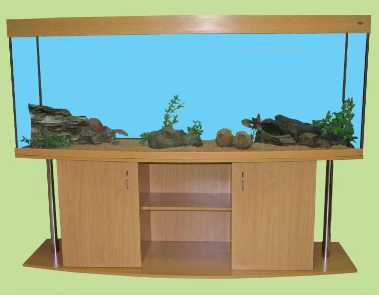 840 l aquariumkombination 200x60x70 cm aquarium gewolbt ebay for Besondere teichfische