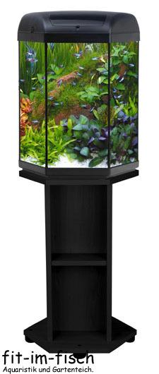 hexa 6 eck komplett aquariumkombination 60 liter ebay. Black Bedroom Furniture Sets. Home Design Ideas