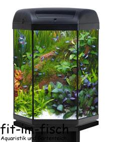 hexa 6 eck komplett aquariumset 60 liter ebay. Black Bedroom Furniture Sets. Home Design Ideas