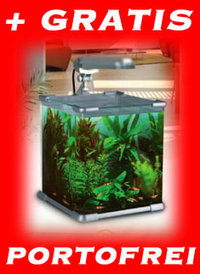 NANO Qube Aquarium Shrimp Set 40 - Komplettangebot