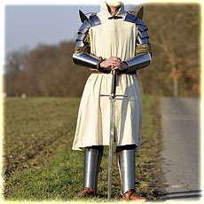 plate armour - beginner set type 3