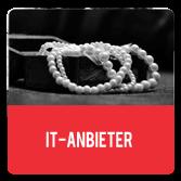IT-Anbieter