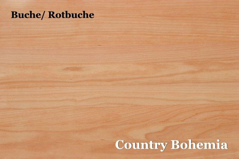 Rotbuche