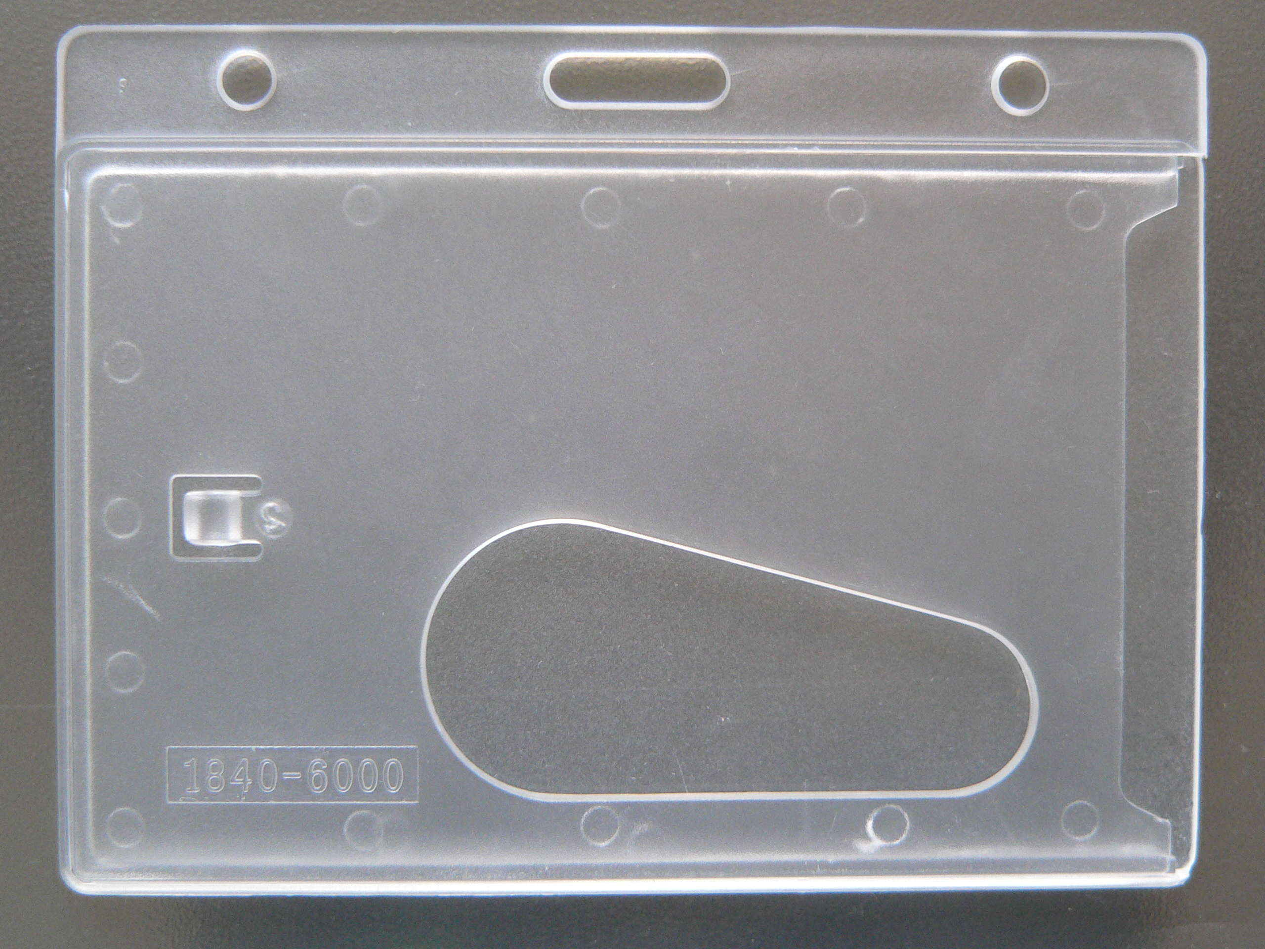 P1130918.JPG