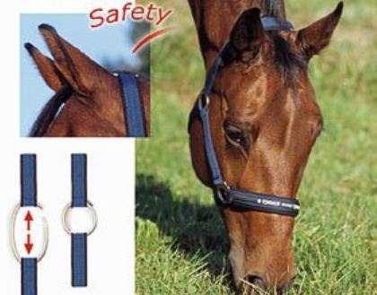 Eskadron Headcollar SAFETY