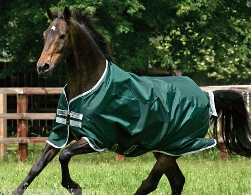 HORSEWARE Rambo Weidedecke light