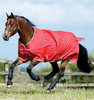 AMIGO Hero outdoorrug light by Horseware