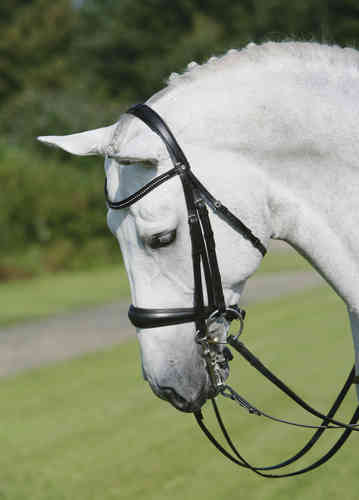 Double Bridle PREMIUM by Busse