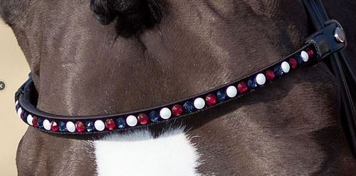 Inlay for MagicTack Browband by ESKADRON