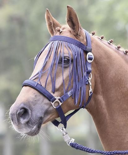Flystring Browband VISBY by BUSSE