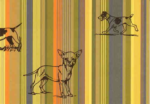 stripey dog postkarte