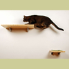 scratcher itch step LPL