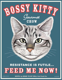 bossy kitty