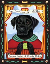 san retriever de labrador