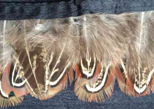 feathers on trim brown/beige 2""