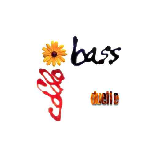 """cello + bass duette"""