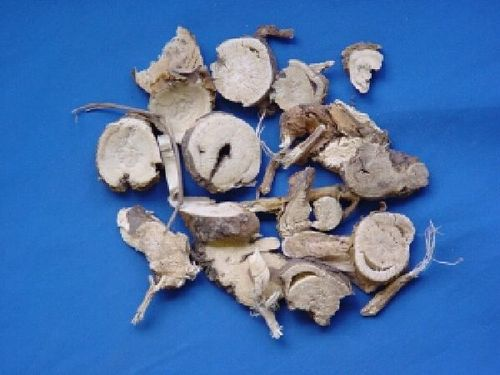 Sophora, Radix - Yellow Pagoda Tree Root  - KU SHEN