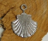 Jakobsmuschel am Ring - a pilgrim-scallop on the ring