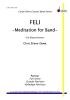 Feli - Meditation for Band
