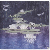 B8 - Water-Lily´s in Landscape
