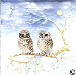 Couple of Owl