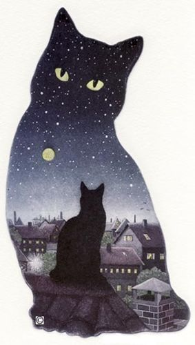 61. Cat in the Night