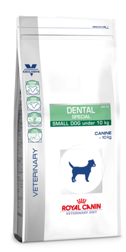 Dental® special small dog