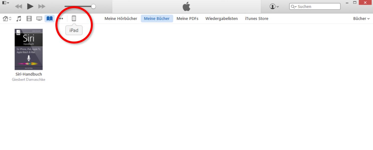Gerät in iTunes auswählen