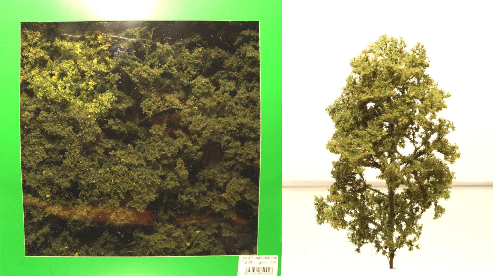 Natur-Laubbäume in Herbstfarben 8-12cm 12 Stück Modell Spur H0 // N Jordan 4C