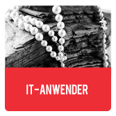 IT-Anwender