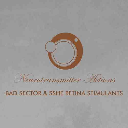 BAD SECTOR / SSHE RETINA STIMULANTS Neurotransmitter Actions CD