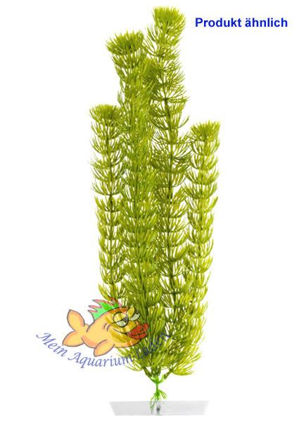 Wasserpflanze Anacharis Sehr Gross 34 43 Cm Kunststoff Deko Aquarium
