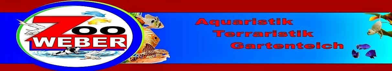Banner_Logo_Ebay.jpg