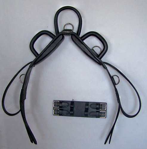 Vaulting strap with round handles