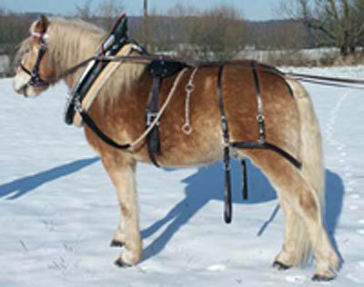 One-piece work harness with collar