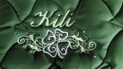 embroidery designs Irish
