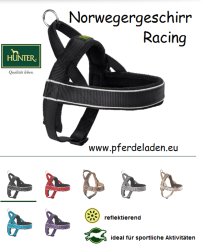 Norwegian Harness Racing