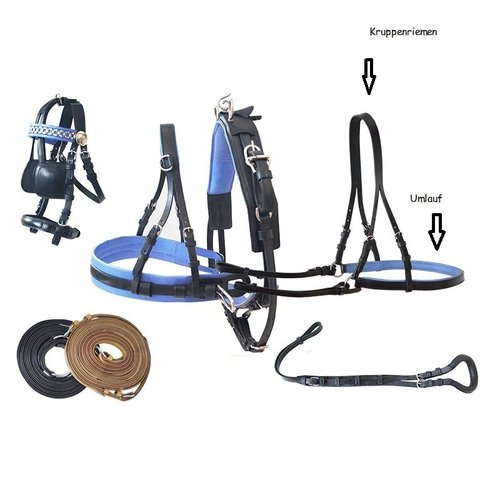 "Rear harness ""Basic"" - Croup straps"