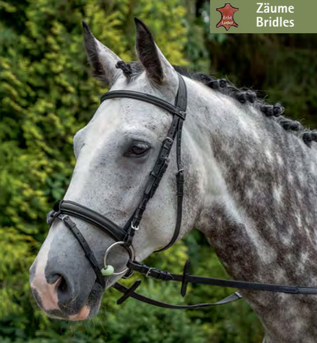 English combined Bridle Linus Super S by USG