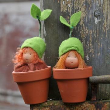 copyright www.blumenkinderundelfen.de Keimlinge für den Jahreszeitentisch