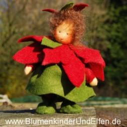 Weihnachtstern_copyright_www.BlumenkinderUndElfen.de_1_Titel.jpg