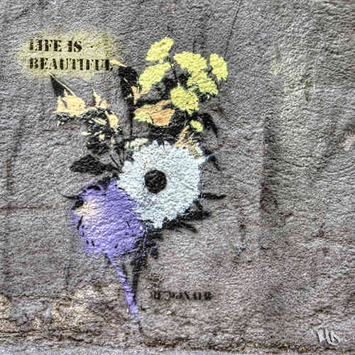 Kölner Graffiti - Life is beautyful