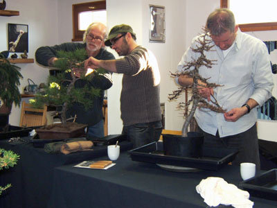 Seminar 4 Bonsai-Zentrum Armbruster