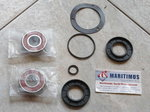 Williams Repair Kit Jet Pump, Textron Repair Kit Jet Pump. Weber Repair Kit Jet Pump