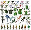 Baumfrosch, schildkröte, gecko,eidechse,schnecke, katalog_Magnete_insekten_Magnete_die_käfer_kommen_katalog_deko_küche_bad_nachbildung_attrappen_büromagnete_dekomagnete_kühlschrankmagnete_fridgemagnets_Sammelmagnete_tiere_amphibien_frösche_vögel