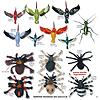 vogelspinnen, spider, hummingbird, kolibries, grashüpfer, insekten_katalog_Magnete_insekten_Magnete_die_käfer_kommen_katalog_deko_küche_bad_nachbildung_attrappen_büromagnete_dekomagnete_kühlschrankmagnete_fridgemagnets_Sammelmagnete_tiere_amphibien_frösche_vögel
