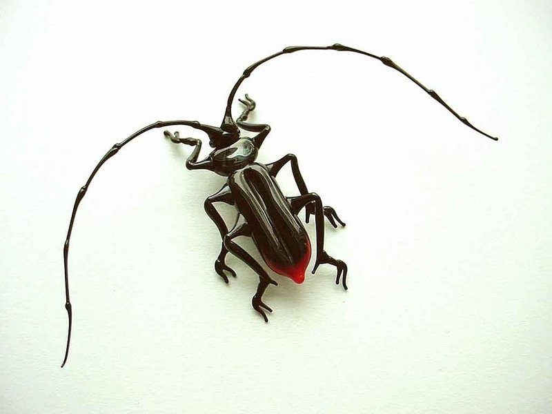 great capricorn beetle